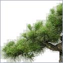Szép és átlátható weboldalak készítése kedvező áron